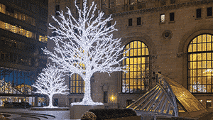 image of commerce court at night