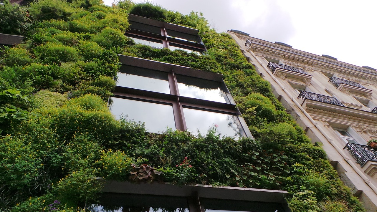 image of a building with green shrubbery on the exterior. Fits in line with QMC's Sustainability Through Accountability measures.